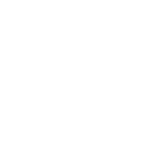 banenr logo